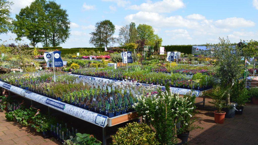 Tuincentrum Groenen Impressie 5